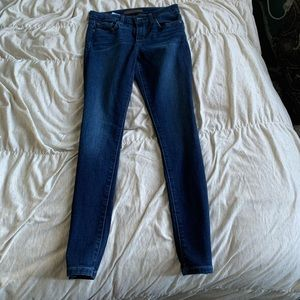 Joe's Icon Skinny Jeans in Tana Wash